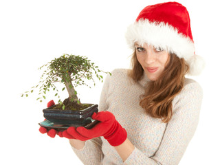 Santa girl in red Christmas hat with bonsai tree