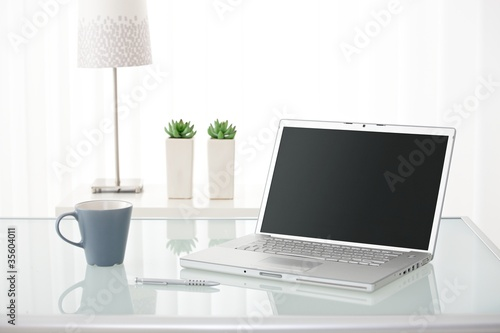 Computer, coffee mug, lamp and plants
