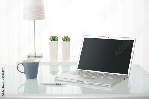 Computer, coffee mug, lamp and plants