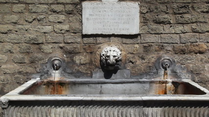 Lion head in center of two old water source