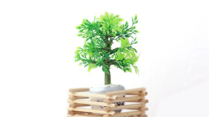 Artificial plant in flowerpot circled by wooden lattice