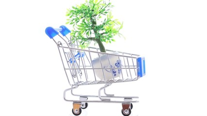 Artificial ornamental plant in flowerpot inside shopping trolley