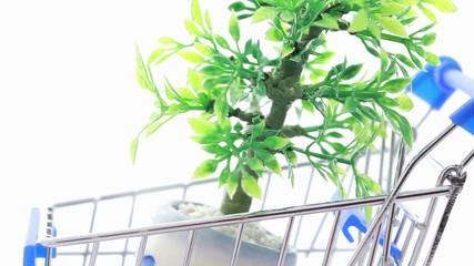 Artificial ornamental plant in flowerpot inside shopping trolley