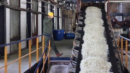 Worker controling a production of sugar