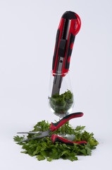 Parsley, a pliers, a cutter and a glass