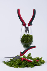 Parsley, two pliers and a glass #2