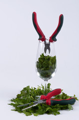Parsley, two pliers and a glass #1