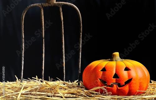 Miedo en Halloween.