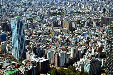 Tokyo by day from Shinjuku