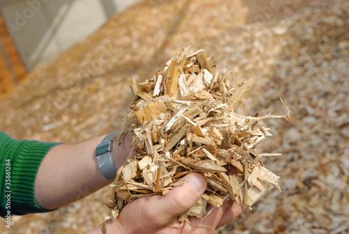 Hand mit Holz Hackschnitzel - 35661284