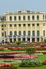 Les fleurs de Schonbrunn