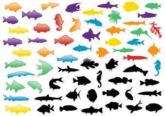 Fish silhouettes illustration set