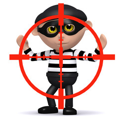 3d Burglar in crosshairs