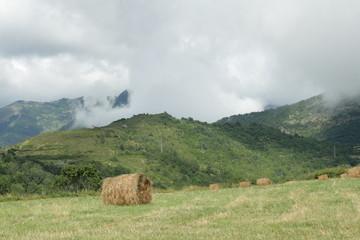 Ballot de paille,Haute vallée de l'Aude