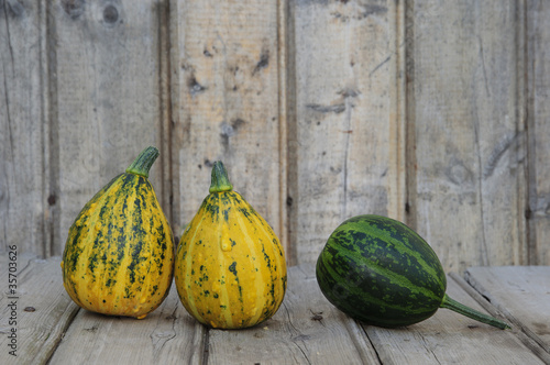Decorative Pumpkin