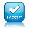 """I ACCEPT"" Web Button (agreement terms and conditions contract)"