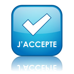 Bouton Web J'ACCEPTE (signature d'accord conditions générales)