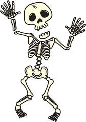 骸骨 skeleton