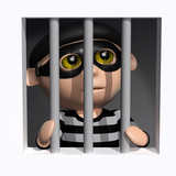 3d Burglar is behind bars.
