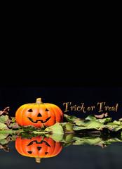 Calabaza de Halloween con truco o trato.