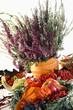 calluna vulgaris Herbst Stimmung