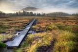 Wanderweg vor Sonnenaufgang in Schweden