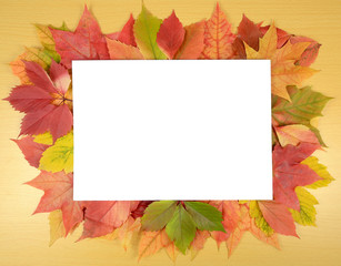 autumn leaves and sheet of paper