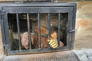 Gefangener hinter Gittern