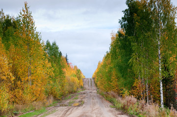 Wild mountain road in deep taiga forest, Komi region, Russia.