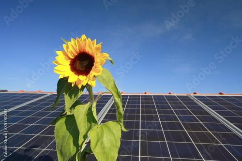 erneuerbare Energie - 35730837