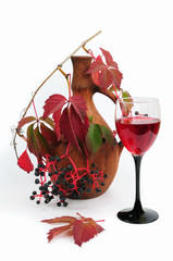 vine, jug and glass with wine