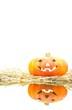 Calabaza de halloween sobre paja y con reflejo.