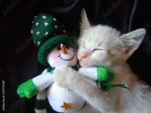 kitten cuddling with snowman toy