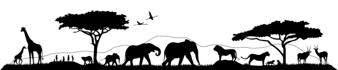 Savannen Silhouette Landschaft Tiere