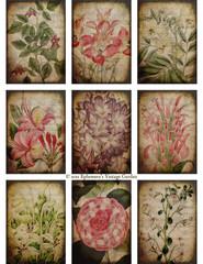 Botanical Backgrounds ATC