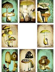 Vintage Mushrooms and Birds ATC