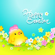 Easter card with funny chicken and flowers. Vector illustration