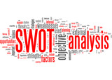 Swot analysis (Strenght, Weakness, Opportunity, Threat)