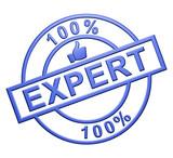 """""""100% Expert"""" Cachet (bleu)"""