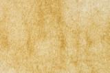 Fototapeta tekstura - pergamin - Papier / Karton