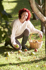 Woman collecting apples off the ground