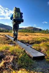 Wanderer mit Rucksack auf dem Weg durch Moorlandschaft