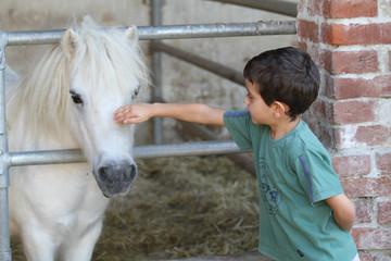 bambino che accarezza un pony