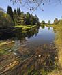 autumn river Vltava in national park Sumava Czech republic