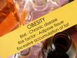 Obesity (concept)