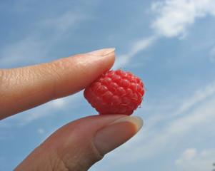 Fingers hold raspberry against blue sky