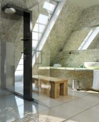 Bathroom with a shower (focus)