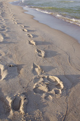 traces on the morning sea sand