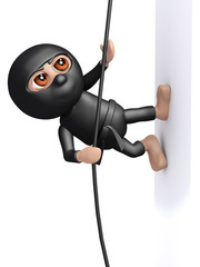 3d Ninja climbs silent and deadly up the wall