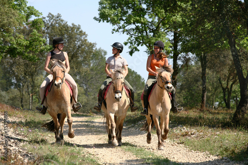 canvas print picture Equitation balade - Riding